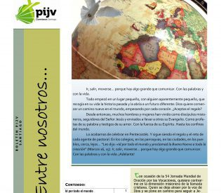 Boletín PIJV Santiago Junio 2017